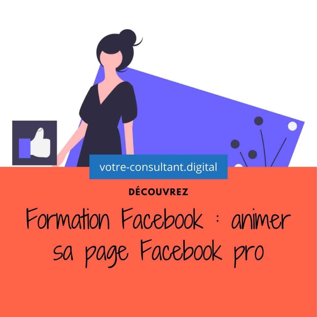 Formation Facebook : animer sa page Facebook pro